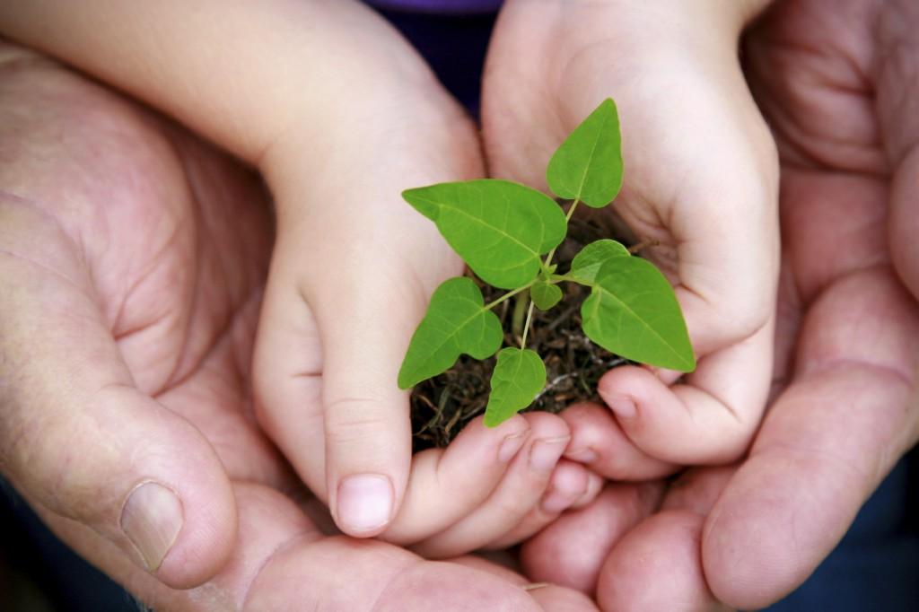 atitudes sustentáveis
